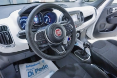 Fiat 500L Usata 38