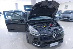 Renault Clio Usata 9
