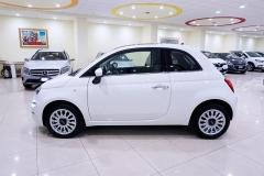 Fiat 500 Bianca 14