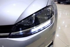 VW Golf 20
