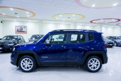 JEEP RENEGADE LIMITED 1600 15