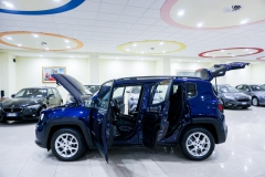 JEEP RENEGADE LIMITED 1600 16