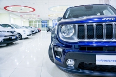 JEEP RENEGADE LIMITED 1600 17