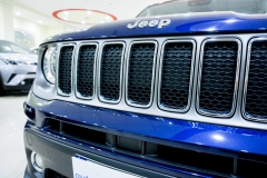 JEEP RENEGADE LIMITED 1600 20
