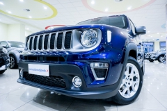 JEEP RENEGADE LIMITED 1600 21