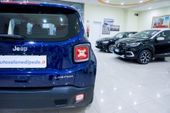 JEEP RENEGADE LIMITED 1600 29