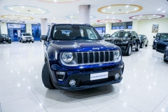 JEEP RENEGADE LIMITED 1600 3