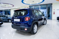 JEEP RENEGADE LIMITED 1600 33