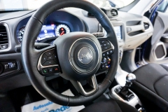 JEEP RENEGADE LIMITED 1600 43