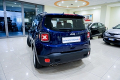 JEEP RENEGADE LIMITED 1600 6