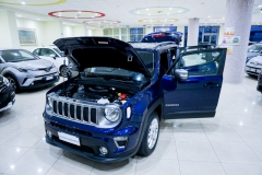 JEEP RENEGADE LIMITED 1600 7