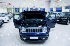JEEP RENEGADE LIMITED 1600 8