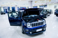 JEEP RENEGADE LIMITED 1600 9