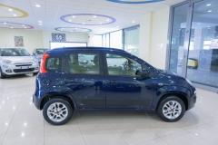 Fiat Panda Usata 16