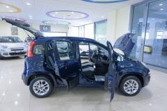 Fiat Panda Usata 17