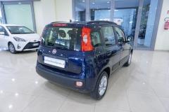 Fiat Panda Usata 4