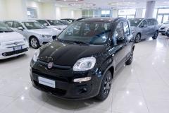 Fiat Panda Usata 13