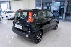 Fiat Panda Usata 15