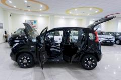 Fiat Panda Usata 19