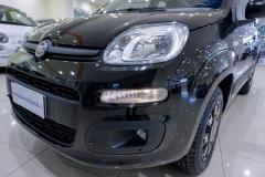 Fiat Panda Usata 24