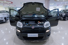 Fiat Panda Usata 8