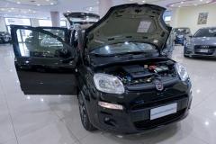 Fiat Panda Usata 9